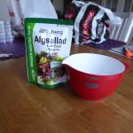 laxsallad med alger 1