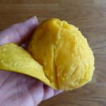 skala mango 2
