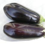 aubergine 2
