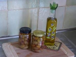 villa-olivias-inlagda-grona-oliver
