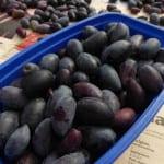 svarta-oliver-snittade